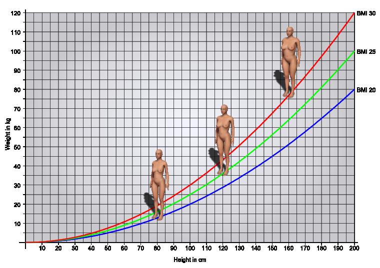 Vüctu kitle İndexi Hesaplama Skalası